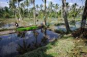 BALI, INDONESIA - JULY , 2014: Farmers working on terrace rice fields on Bali, Indonesia — Stock Photo