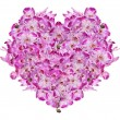 Heart from   orchid flowers — Stockfoto #55499813