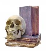 Skull and   old books — Stock Photo