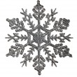 Silver snowflake — Stock Photo #55500527