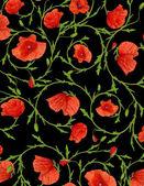 Poppy ornamental  background — Stock Photo