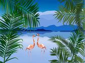 Flamingo in lake — Stock Vector