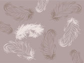 Brown feathers background — Vecteur