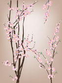 Pink spring  blossoms — Stock Vector