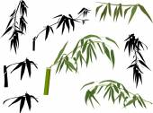 Green and black bamboo leaves — Stock Vector