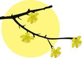 Spring tree branch — Stock Vector