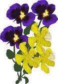Buttercup and garden  flowers — Stock Vector