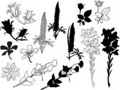 Flower sketches and silhouettes — Stockvektor