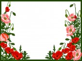 Red and green poppy frame — Stock Vector