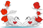 Two swans and red roses — Vector de stock
