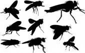 Fly silhouettes — Vetorial Stock