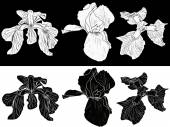 Iris flowers sketches — Stockvector