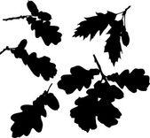 Oak leaves silhouettes — Vector de stock