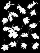 Maple and oak leaves silhouettes — Vector de stock