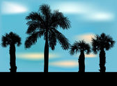 Palm tree silhouettes — Stock Vector