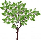 Hnědé strom — Stock vektor