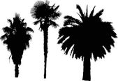 Black  palm trees — Stock Vector
