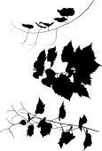Vine silhouettes — Stock vektor