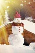 Pupazzo di neve — Foto Stock