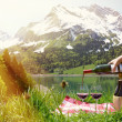 Wine served at a picnic in Alpine meadow. Switzerland  — Stok fotoğraf #61978015