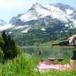 Wine served at a picnic in Alpine meadow. Switzerland  — Foto de Stock   #61978065