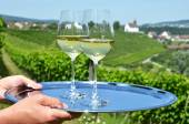 Hands with Wine and grapes — Stockfoto