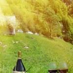 Picnic in Alpine meadow. Switzerland — Stock Photo #76289255