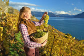 Girl with  basket full of grapes — Stock Photo