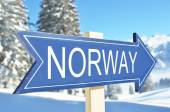 Norway arrow in forest — Stock Photo
