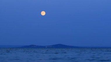 Dark evening  with full moon — Stock Video