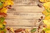 Autumn background with wooden boards — Stock Photo