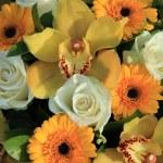 Cymbidium orchids, Gerberas and roses — Stock Photo #52362557
