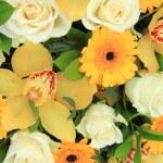 Cymbidium orchids, Gerberas and roses — Stock Photo #52362649