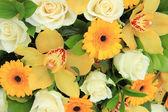 Cymbidium orchids, Gerberas and roses — Stock Photo