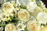 White wedding arrangement — Stock Photo
