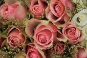 Mixed pink roses in bridal arrangement — Stock Photo