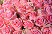Pink roses in bridal bouquet — Stock Photo