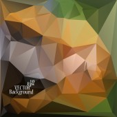 Multicolor ( Green, Yellow, Brown ) Design Templates. Geometric Triangular Abstract Modern Vector Background.  — Vector de stock