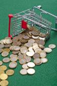 Coins in  shopping basket — Stock Photo