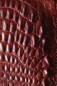 Alligator gemusterten Hintergrund — Stockfoto