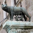 The statue of Romul and Remus — Stock Photo #71033535