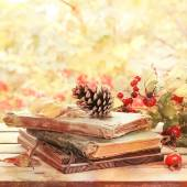 Old books, leaves and cone  in autumn scenery — Stok fotoğraf
