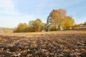 Rural landscape of cultivated fields and sky in autumn — Stock Photo