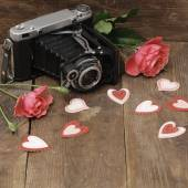 Vintage camera and roses — Stockfoto