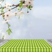 Empty spring table for Your photomontage or product display — Stock Photo