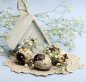 Wielkanoc-skład jaj przepiórczych — Zdjęcie stockowe