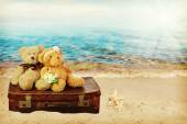 Two in love teddy bears sit on a suitcase. holiday concept — Stock Photo