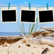 Blank instant photos hanging on clothesline at the beach — Stock Photo #77881130