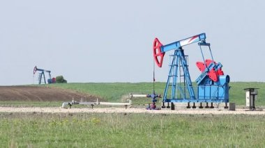 Two oil pump jack on oilfield — Stock Video