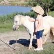 Little girl and white pony horse — Stock Video #56816811